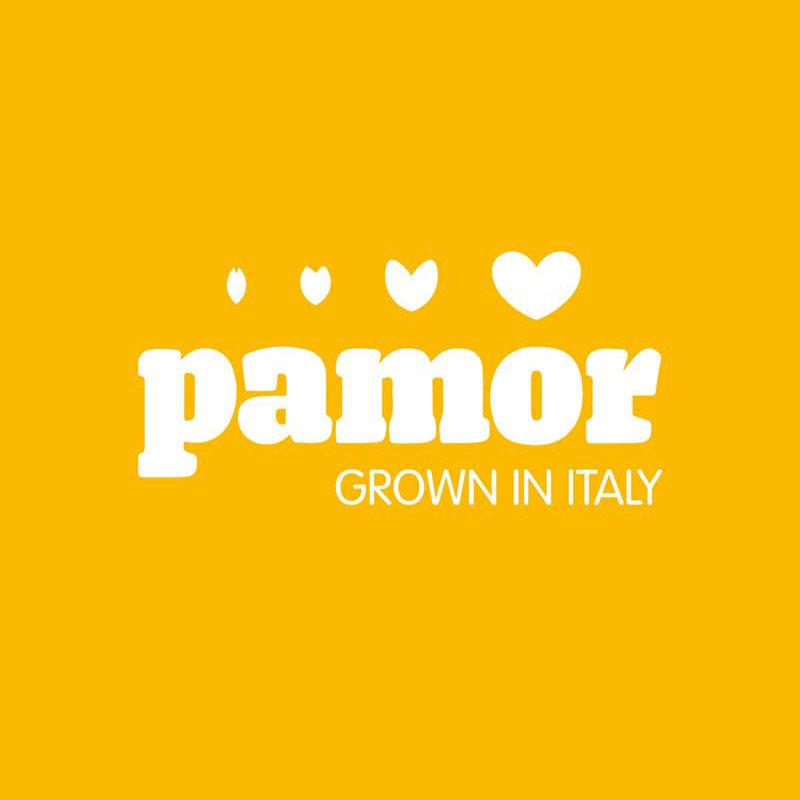 Pamor, logo negativo, giallo